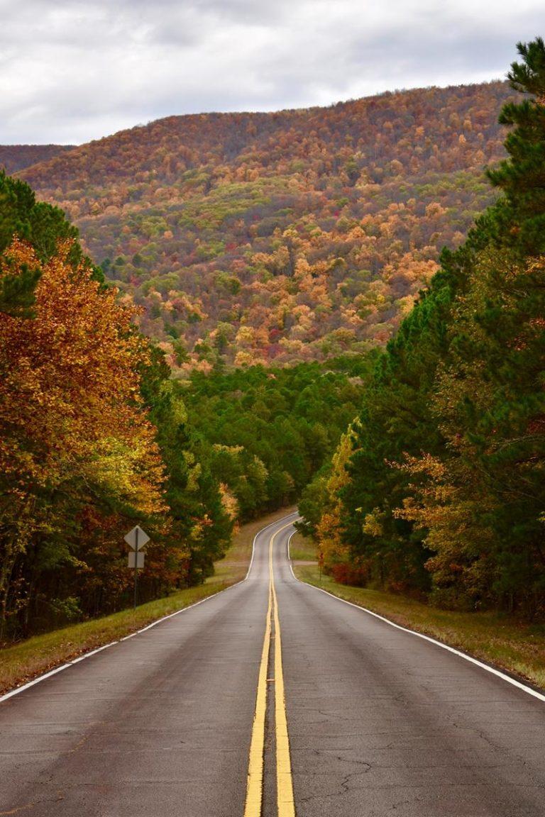 Jak wybrać pomoc drogową w nagłej potrzebie?